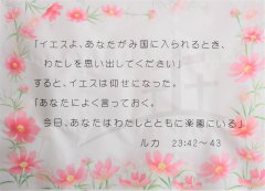 DSCF4637.JPG
