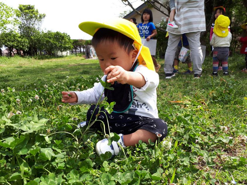 すみれ組(1歳児) 春の姿
