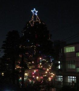 クリスマス 喜びの日は近いです